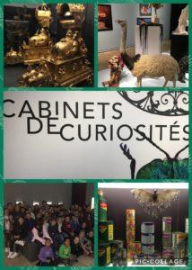 Cabinets des curiosités …